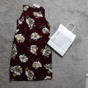 Ann Taylor Dress (Petite) NWT
